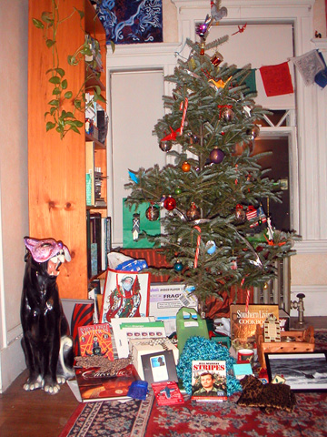 christmas tree after image